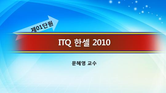 ITQ 한셀 2010 자격증 한번에 따기