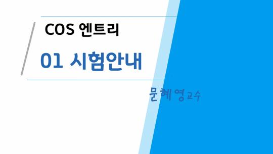 COS(Coding Specialist) 자격증 따기 (YBM시행) 1급 따기 - 엔트리