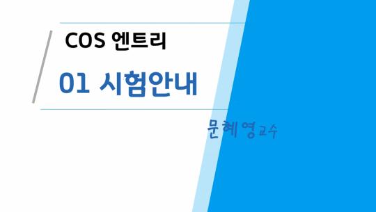 COS(Coding Specialist) 자격증 따기 (YBM시행) 2급 따기 - 엔트리