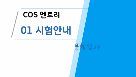 COS(Coding Specialist) 자격증 따기 (YBM시행) 3급 따기 - 엔트리